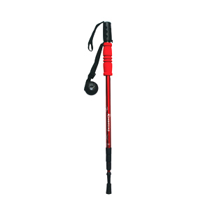 Cell phone selfie trekking pole
